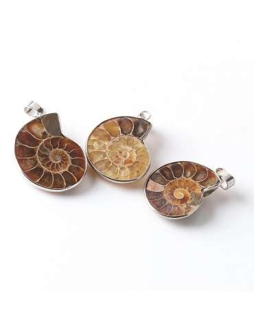 three-seashell-shape-ammonite-vintage-necklace-gemstone-jewelry-birthstone-pendant-white-background-hihoney-hn050